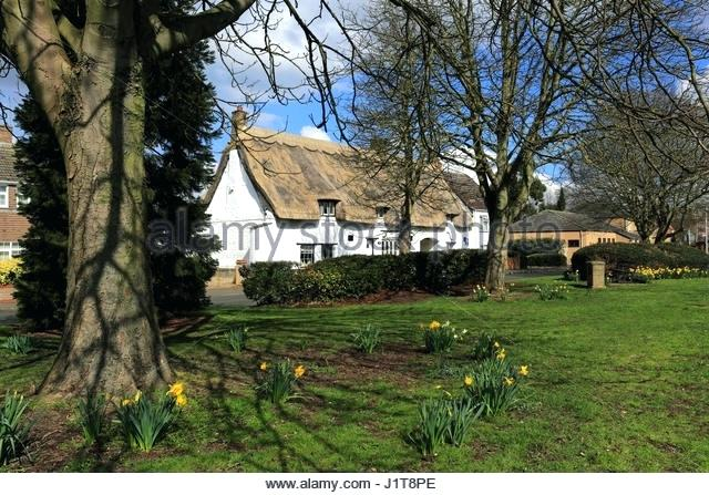 cherry house werrington spring village green stock image