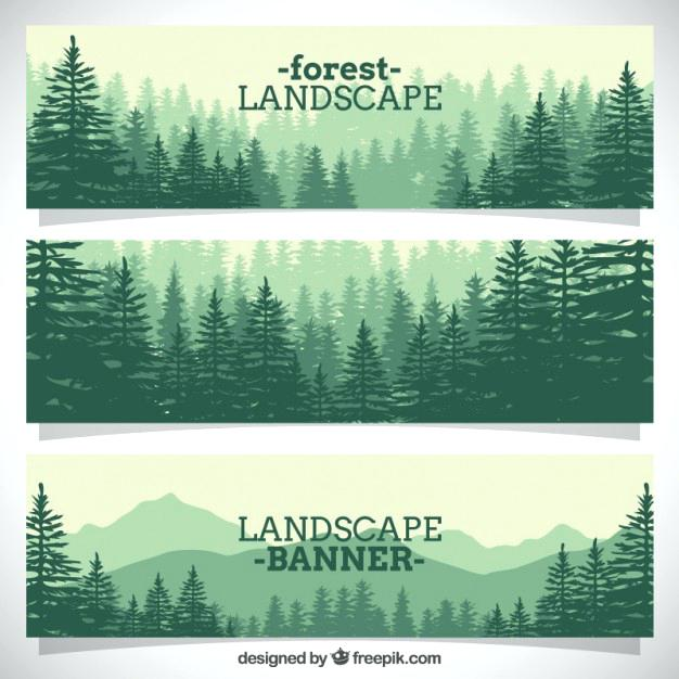 forest landscape vector forest landscape 27 vector