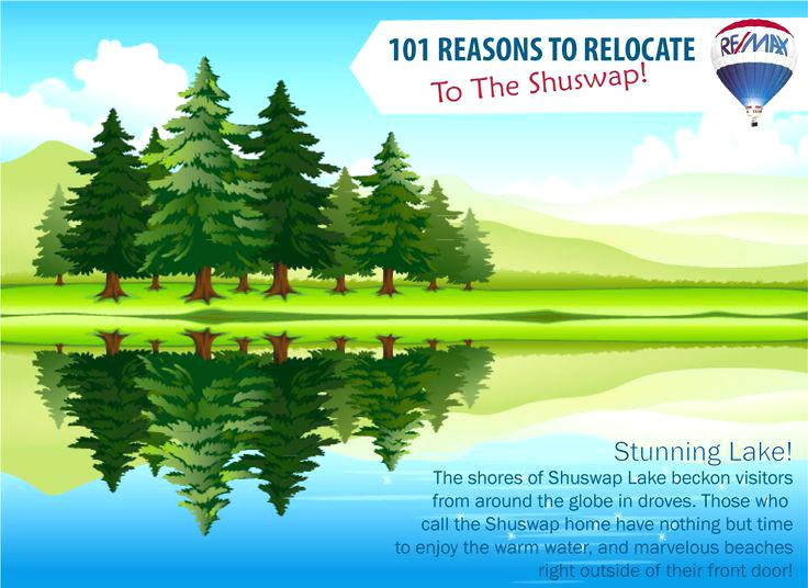 forest landscape vector green pastures and forest landscape vectors in five of the most beautiful illustrations we have seen recently adding up to an excellent design both in forest landscape 27 vecto