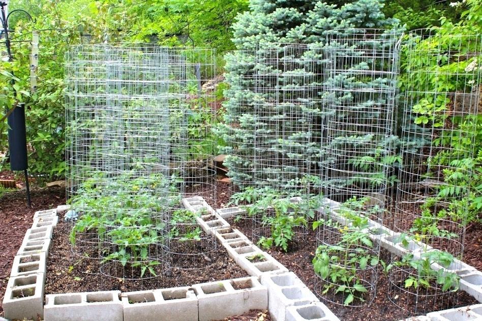 house trellis designs awesome backyard trellis ideas backyard vegetable garden house design with raised garden beds house trellis ideas