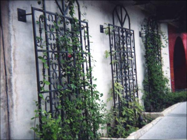 house trellis designs explore unique amazing metal garden trellises garden wall trellis metal design recommendations from griffin to redesign your house house trellis ideas