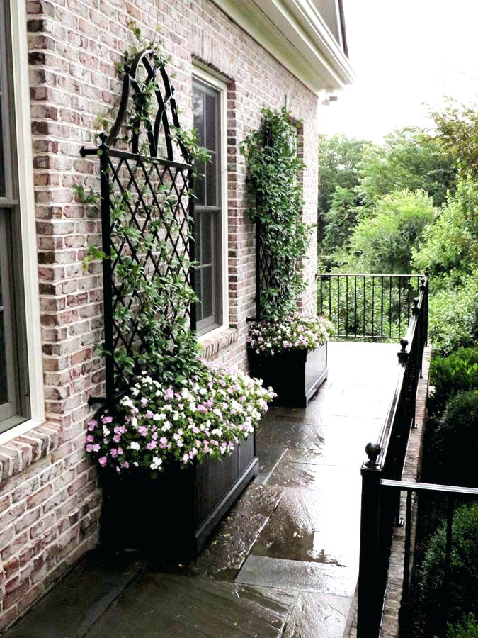 house trellis designs for today i have a great article for you that i called creative and easy trellis ideas for your garden a garden trellis is an excellent way house trellis ideas