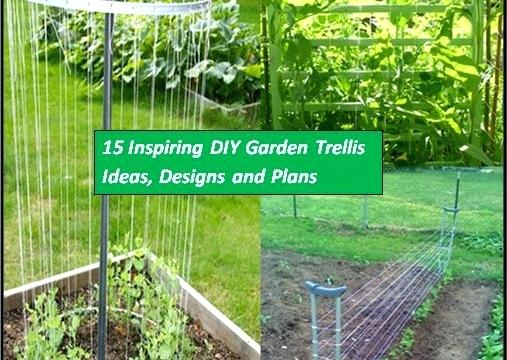 house trellis designs garden trellis house trellis ideas