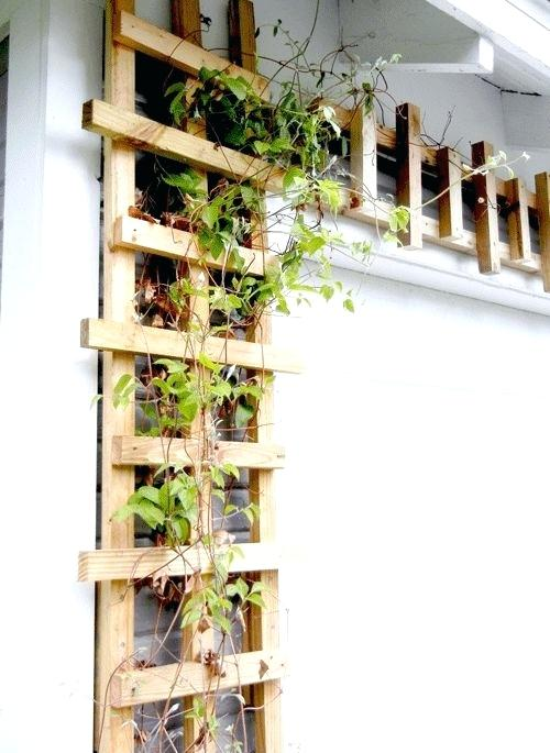 house trellis designs modern trellis design for around my garage door house trellis ideas