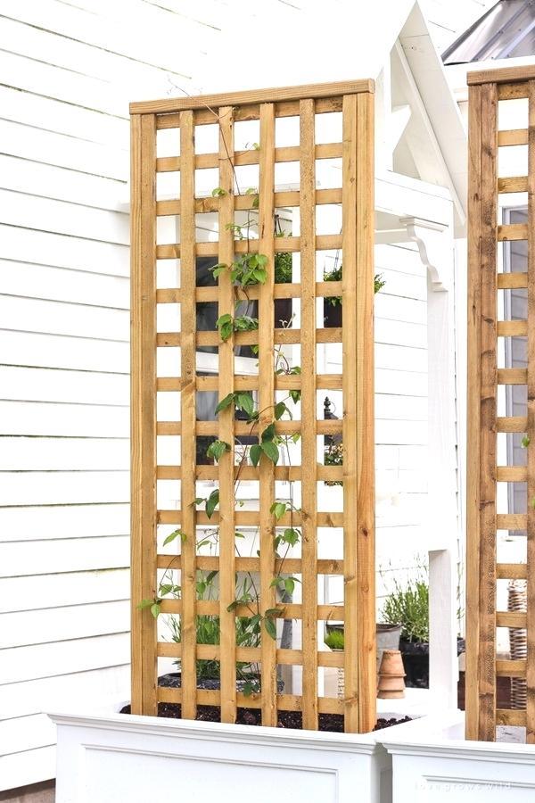 house trellis designs planter box with screen trellis house trellis ideas
