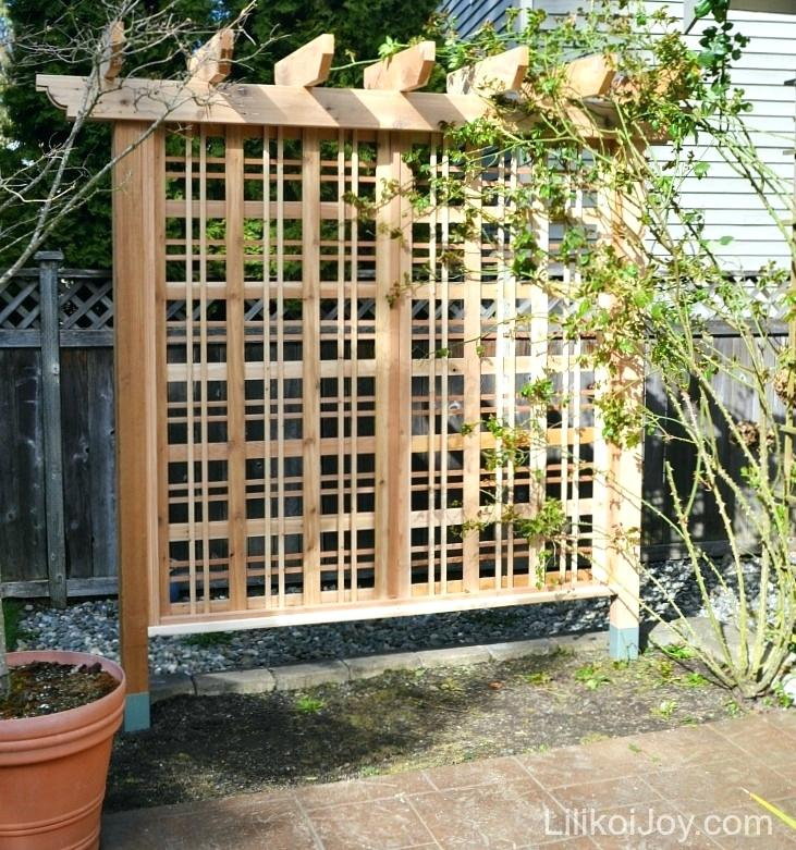 trellis next to house the trellis is usually a piece of latticework that can be mounted against a building or be free standing vines are usually the best plants to use on a