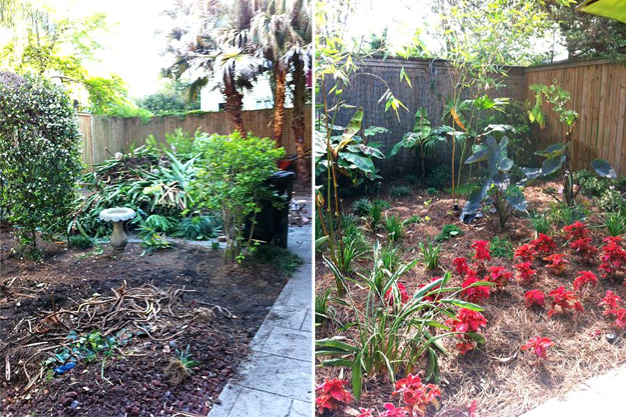 landscaping new orleans area new landscape company