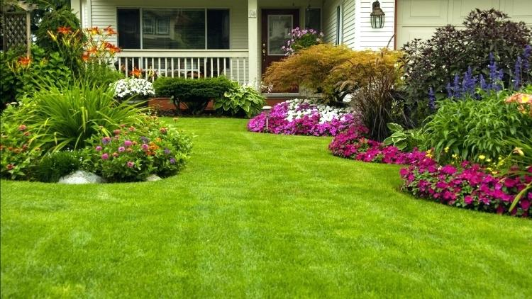 landscaping new orleans area when you make the decision to install new landscaping you really know where to start do you install hollies magnolias shrubs annuals or azaleas
